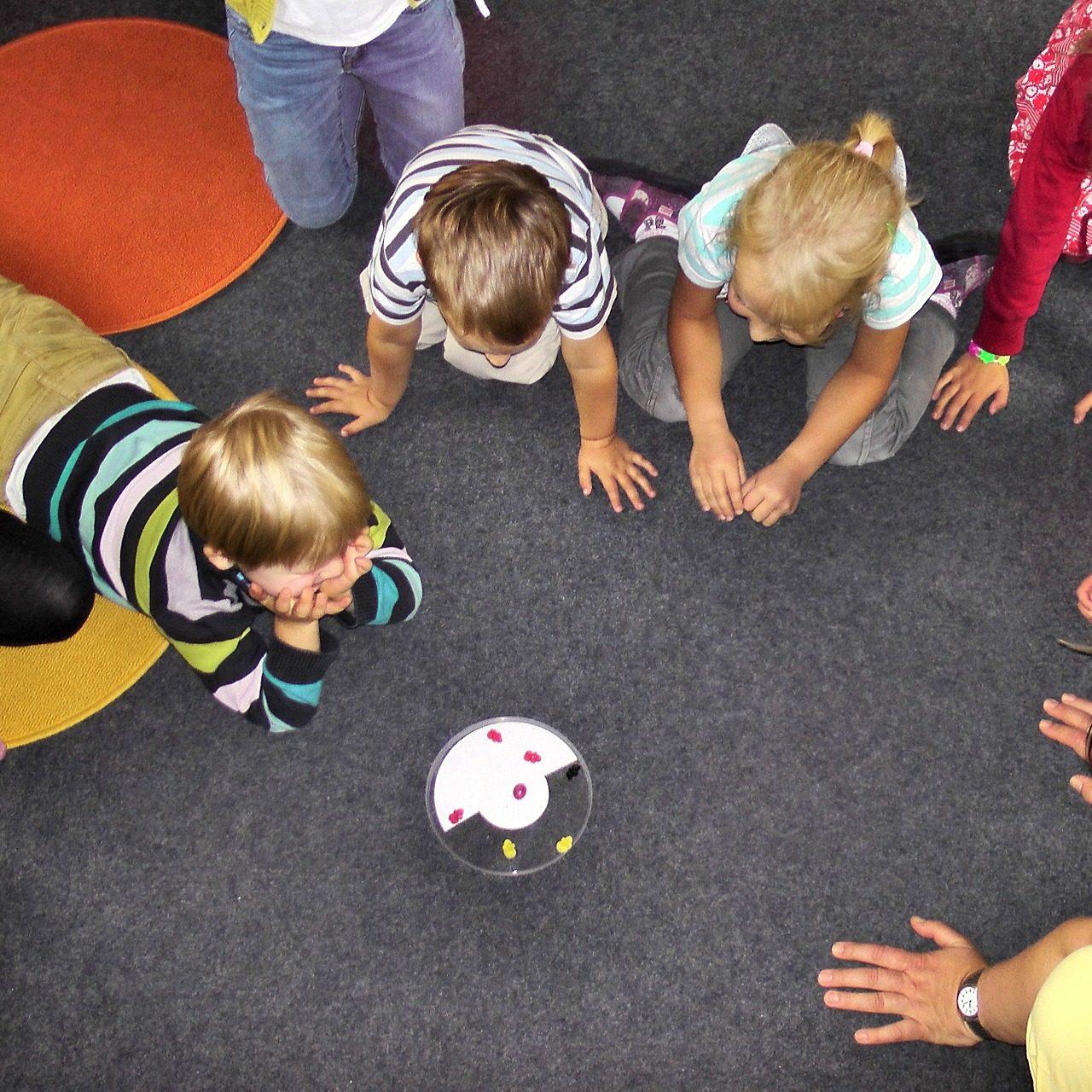 Joyland Preschool Kindergarten Program